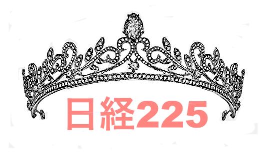 ティアラ日経225.jpg